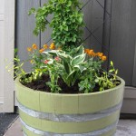 Half Barrel Planter